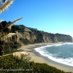 Photo Essay: Slow Travel Down the Pacific Coast Highway