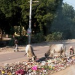 "Self-Proclaimed ""Ugly Indians"" Take a Stand to Beautify India's Streets"