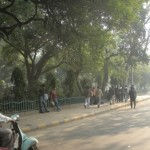 Relieved in Smoggy Delhi