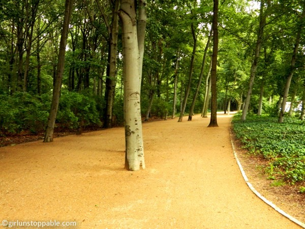 A path in the Tiergarten in Berlin