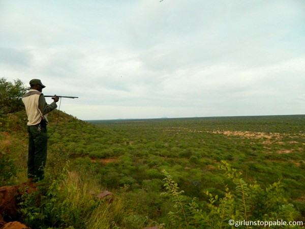Tracking a cheetah at an overlook at Okonjima Nature Reserve in Namibia