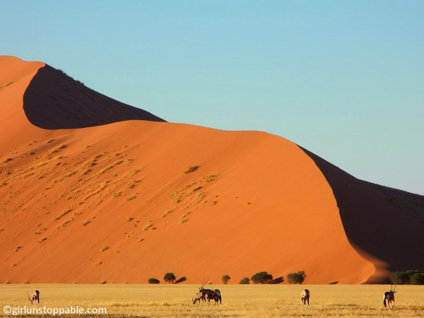 Oryx and sand dunes in Sossusvlei, Namibia