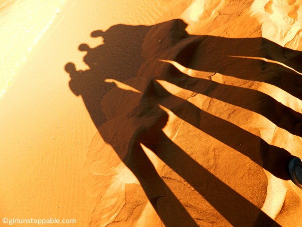 Shadows on the sand in Sossusvlei, Namibia