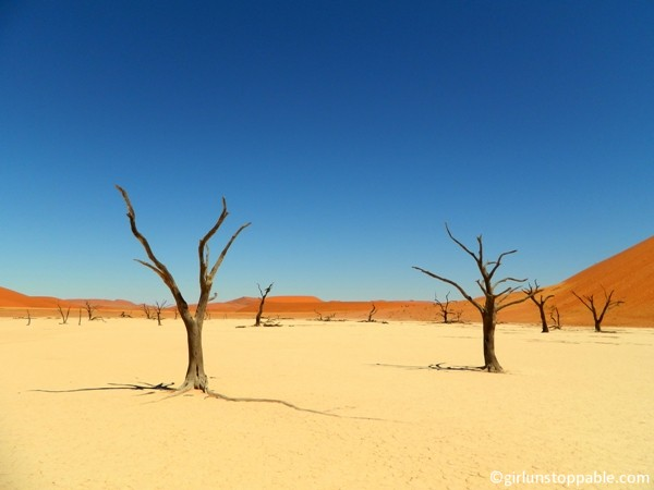 The Deadvlei, Namibia