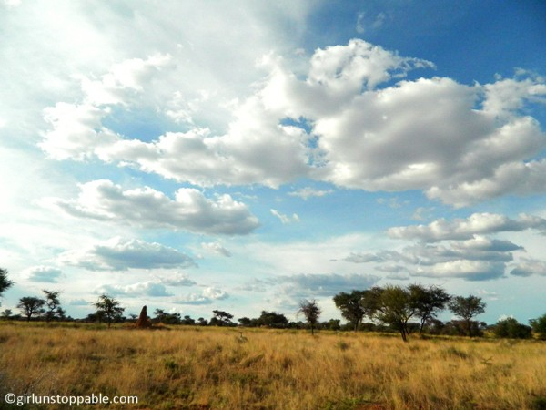 Okonjima Wildlife Reserve, Namibia