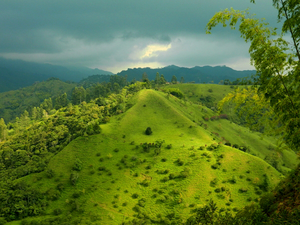 The countryside of Salento, Colombia