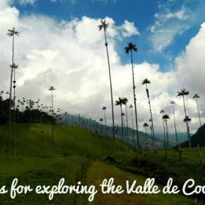 Tips for Exploring the Valle de Cocora, Colombia