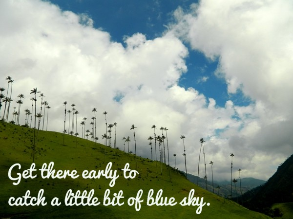 Get to the Valle de Cocora early for blue skies