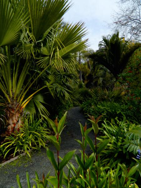 The Gardens at Lake Merritt, Oakland