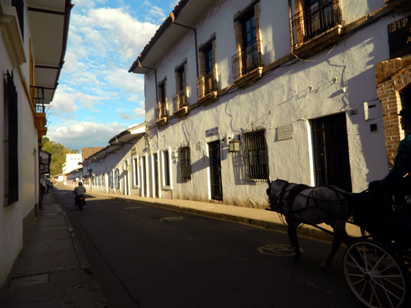 Horse drawn cart on a street in Popayan, Colombia